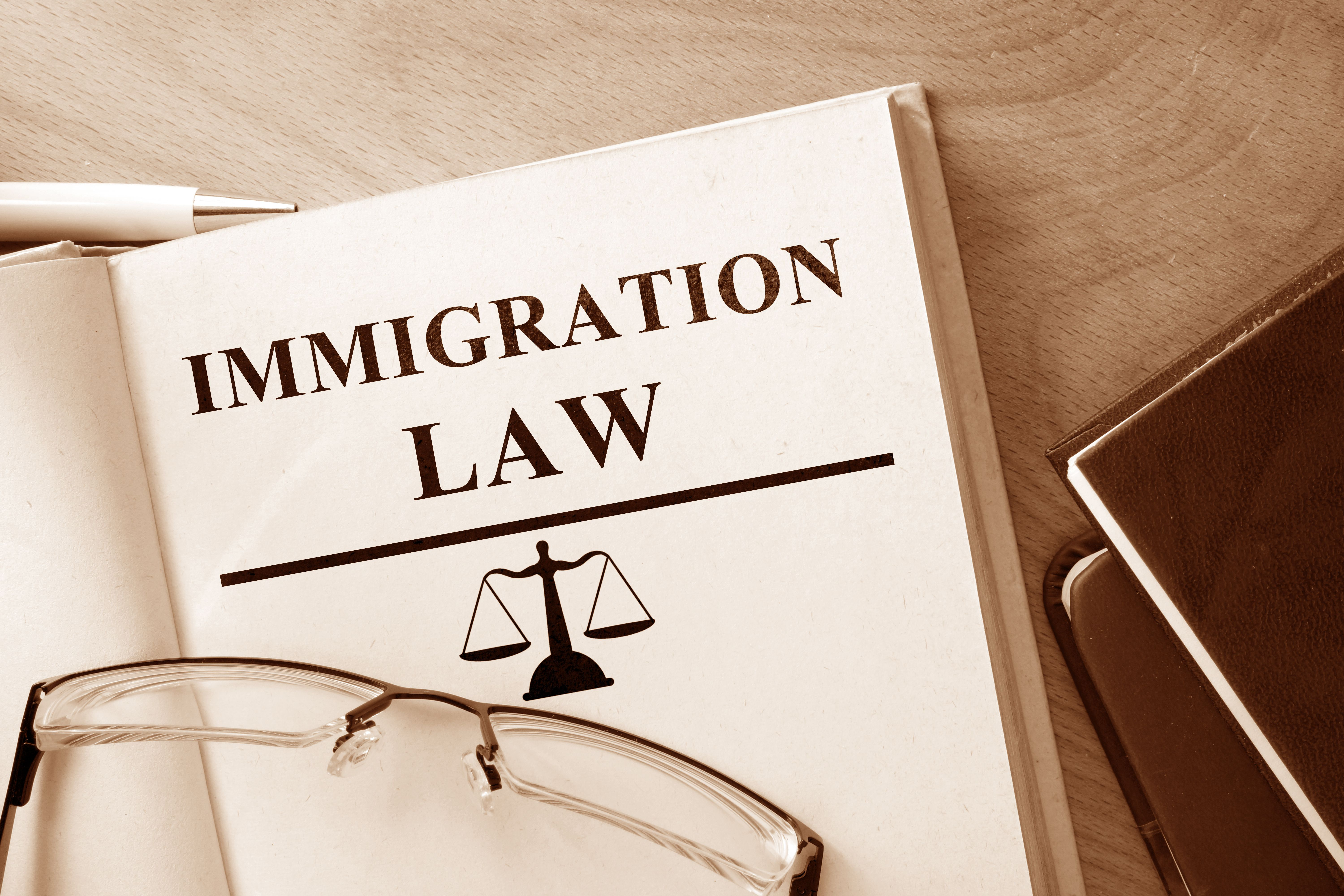 What is The Role of an Immigration Lawyer?